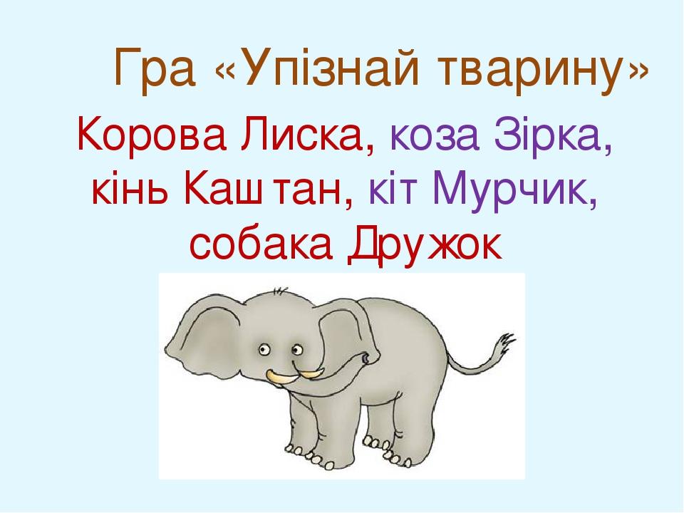 Гра «Упізнай тварину» Корова Лиска, коза Зірка, кінь Каштан, кіт Мурчик, собака Дружок