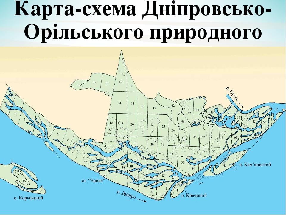 Карта-схема Дніпровсько-Орільського природного заповідника