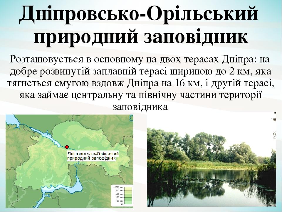 Розташовується в основному на двох терасах Дніпра: на добре розвинутій заплавній терасі шириною до 2 км, яка тягнеться смугою вздовж Дніпра на 16 к...