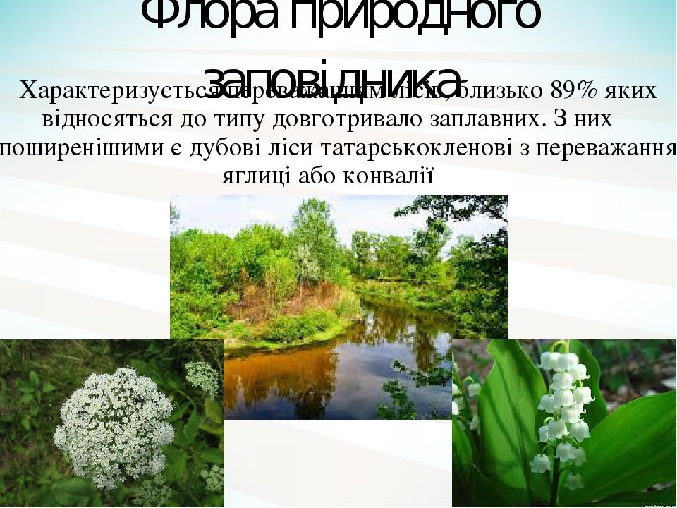 Флора природного заповідника Характеризується переважанням лісів, близько 89% яких відносяться до типу довготривало заплавних. З них найпоширенішим...