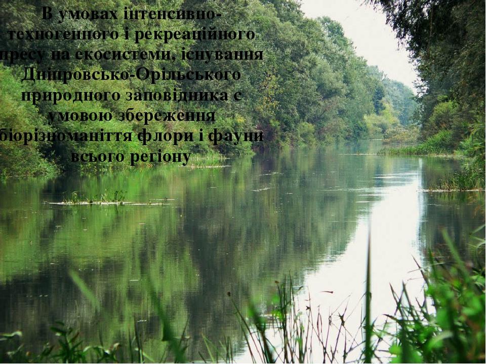 В умовах інтенсивно- техногенного і рекреаційного пресу на екосистеми, існування Дніпровсько-Орільського природного заповідника є умовою збереження...