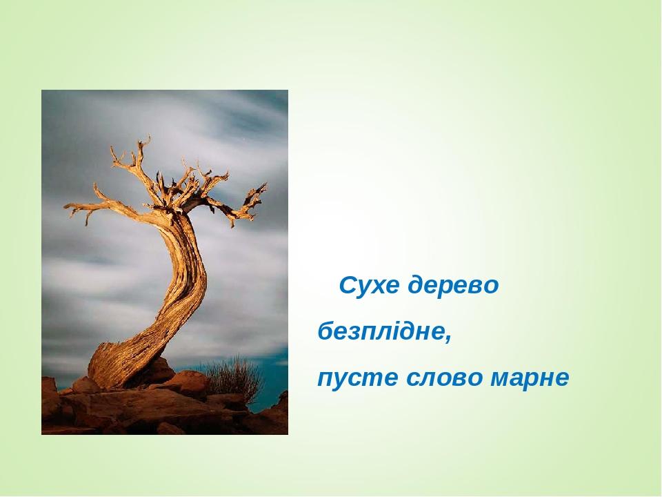 Сухе дерево безплідне, пусте слово марне