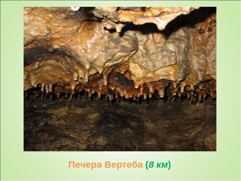 Печера Вертеба (8 км)