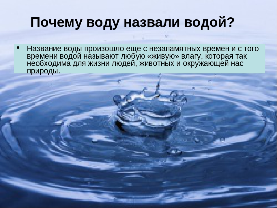 Название воды произошло еще с незапамятных времен и с того времени водой называют любую «живую» влагу, которая так необходима для жизни людей, живо...