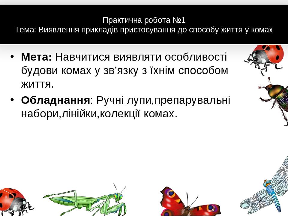 Практична робота №1 Тема: Виявлення прикладів пристосування до способу життя у комах Мета: Навчитися виявляти особливості будови комах у зв'язку з ...