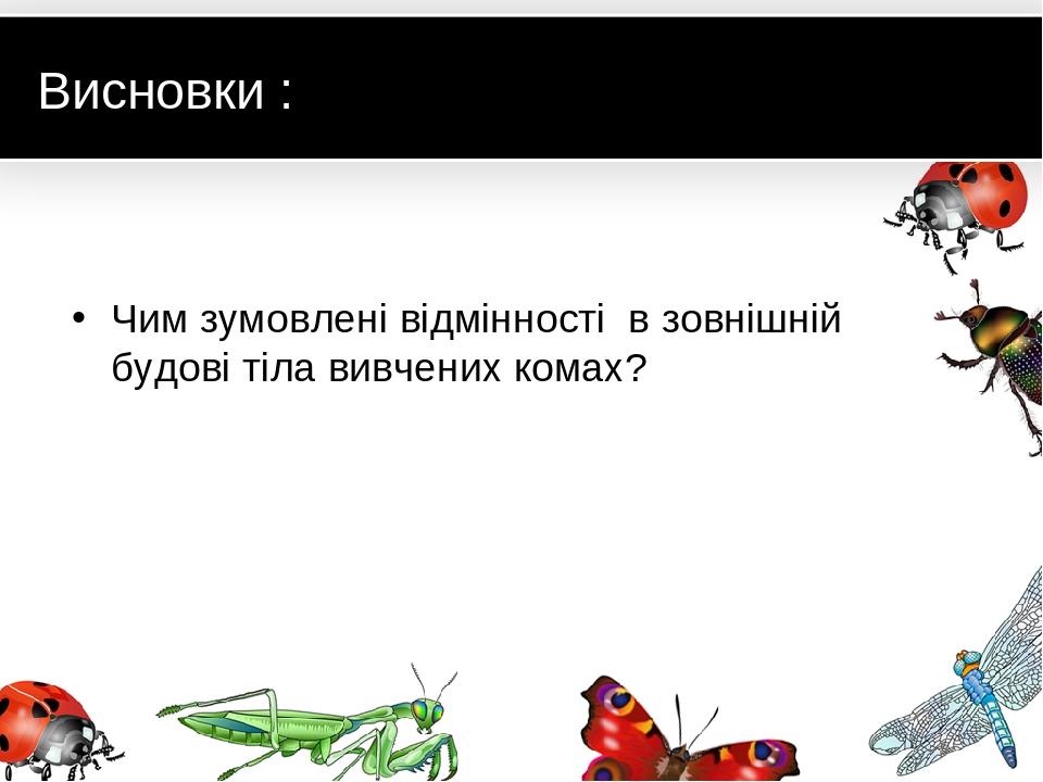 Висновки : Чим зумовлені відмінності в зовнішній будові тіла вивчених комах?