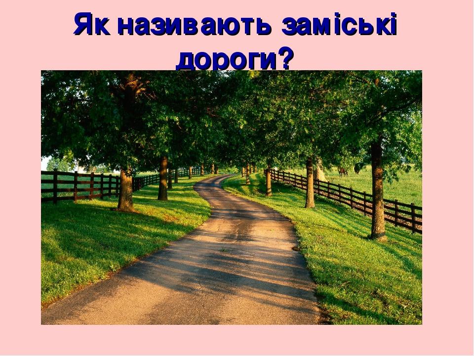 Як називають заміські дороги?