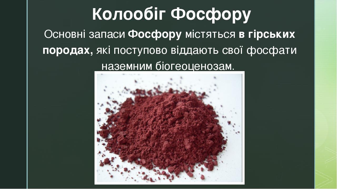Основні запаси Фосфору містяться в гірських породах, які поступово віддають свої фосфати наземним біогеоценозам. Колообіг Фосфору z