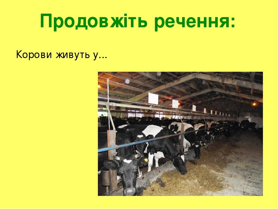 Продовжіть речення: Корови живуть у...