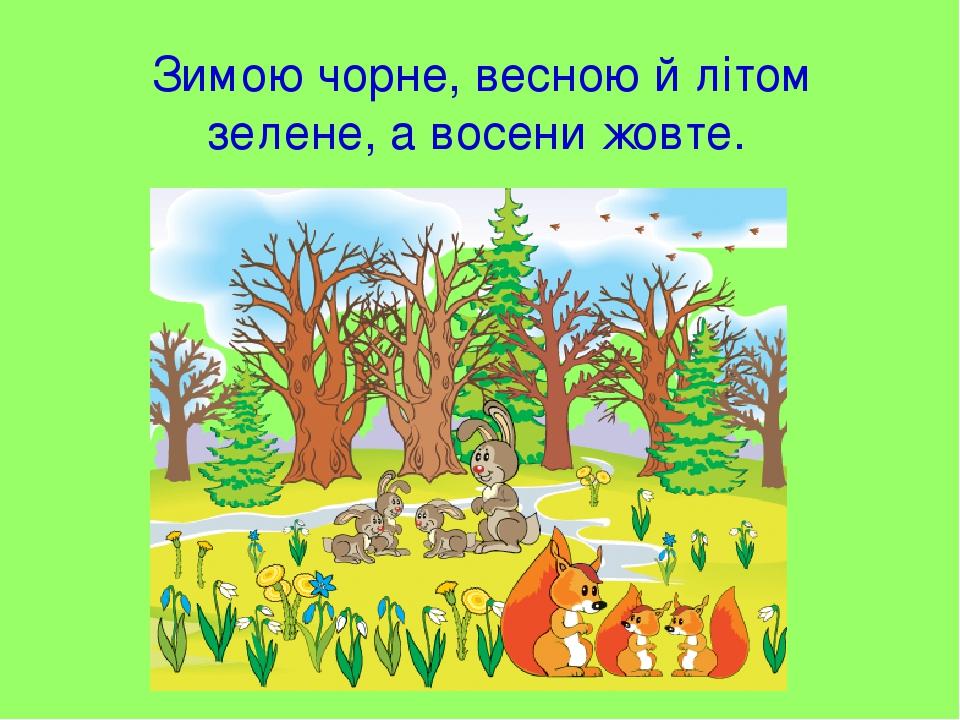 Зимою чорне, весною й літом зелене, а восени жовте.