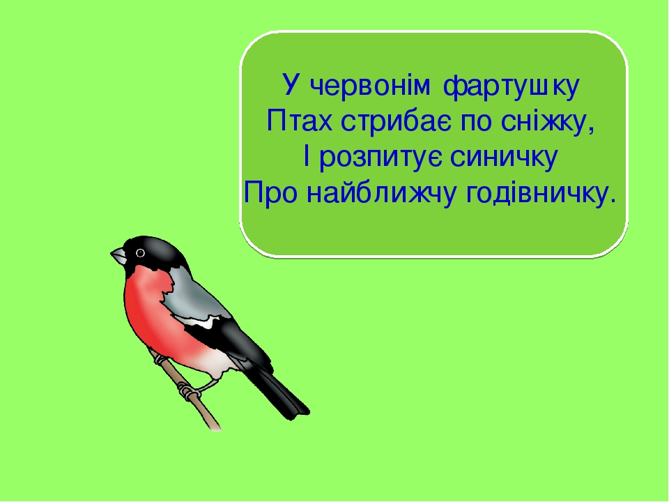 У червонім фартушку Птах стрибає по сніжку, І розпитує синичку Про найближчу годівничку.