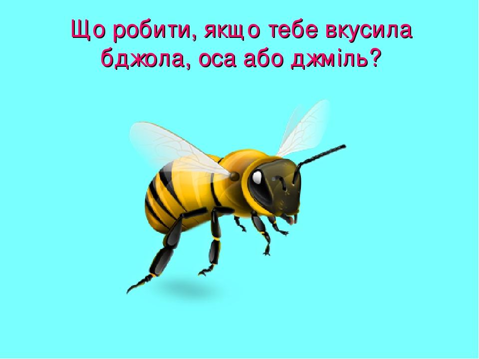 Що робити, якщо тебе вкусила бджола, оса або джміль?