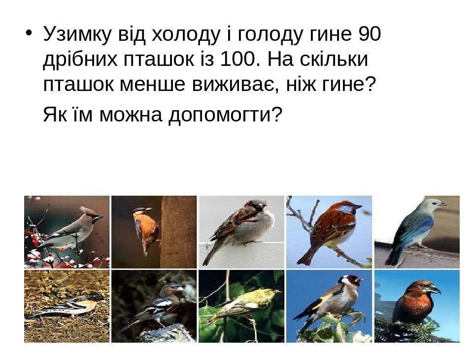 Узимку від холоду і голоду гине 90 дрібних пташок із 100. На скільки пташок менше виживає, ніж гине? Як їм можна допомогти?