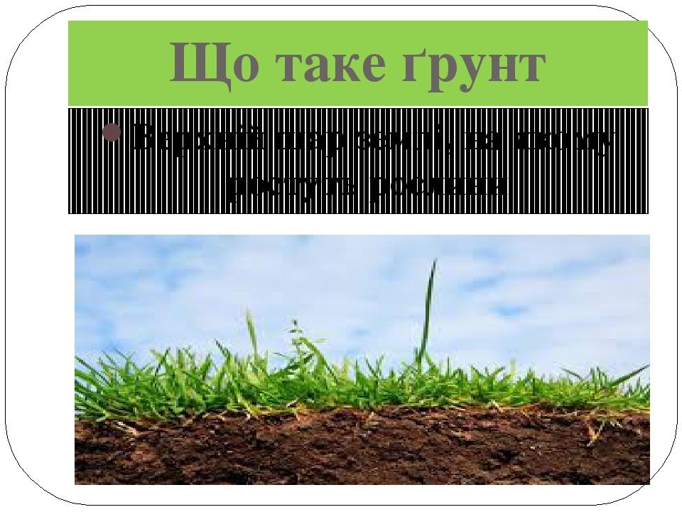 Що таке ґрунт Верхній шар землі, на якому ростуть рослини