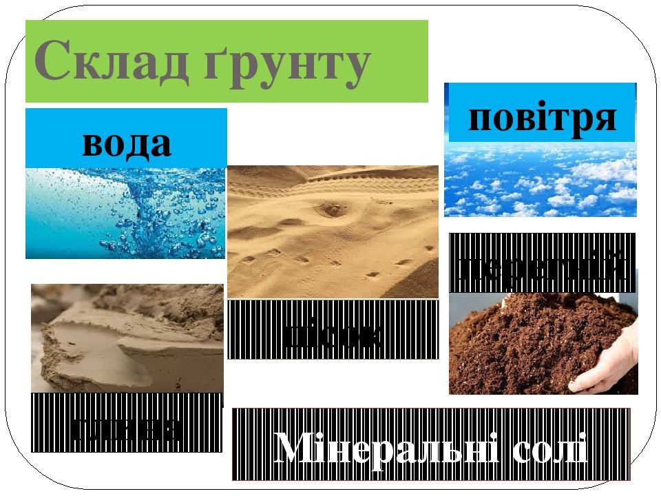 Склад ґрунту вода повітря пісок глина перегній Мінеральні солі