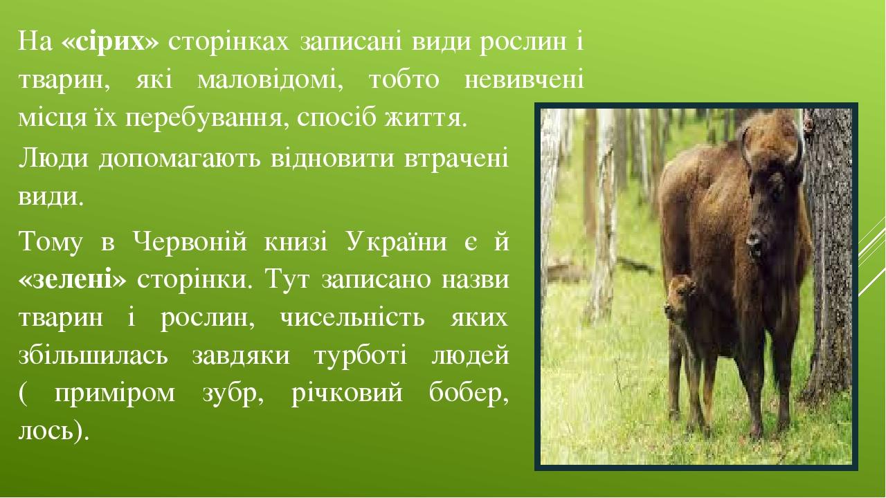 На «сірих» сторінках записані види рослин і тварин, які маловідомі, тобто невивчені місця їх перебування, спосіб життя. Люди допомагають відновити ...