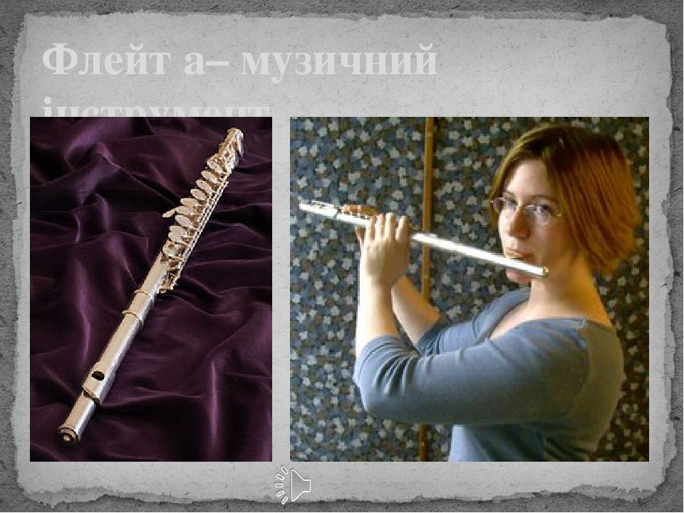 Флейт а– музичний інструмент