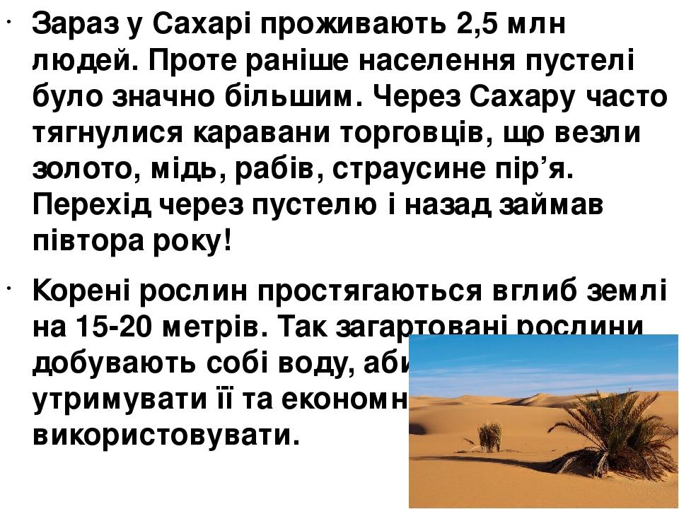 Зараз у Сахарі проживають 2,5 млн людей. Проте раніше населення пустелі було значно більшим. Через Сахару часто тягнулися каравани торговців, що ве...