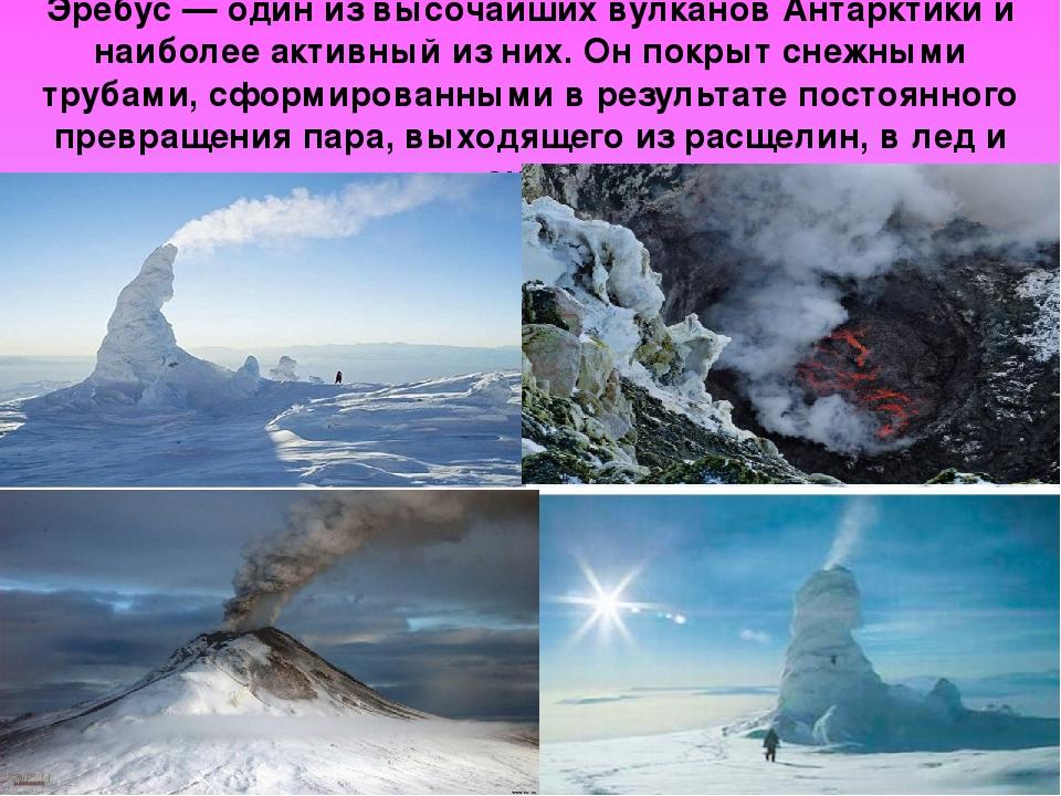 Эребус — один из высочайших вулканов Антарктики и наиболее активный из них. Он покрыт снежными трубами, сформированными в результате постоянного пр...