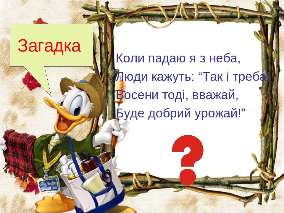 """Коли падаю я з неба, Люди кажуть: """"Так і треба! Восени тоді, вважай, Буде добрий урожай!"""" Загадка"""