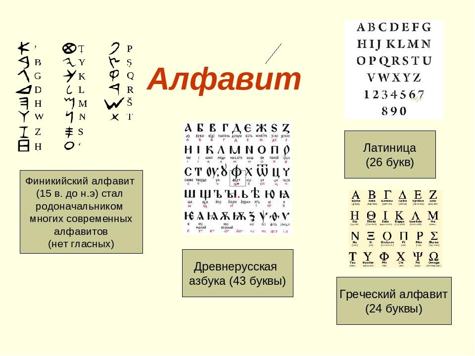 Алфавит Финикийский алфавит (15 в. до н.э) стал родоначальником многих современных алфавитов (нет гласных) Древнерусская азбука (43 буквы) Латиница...