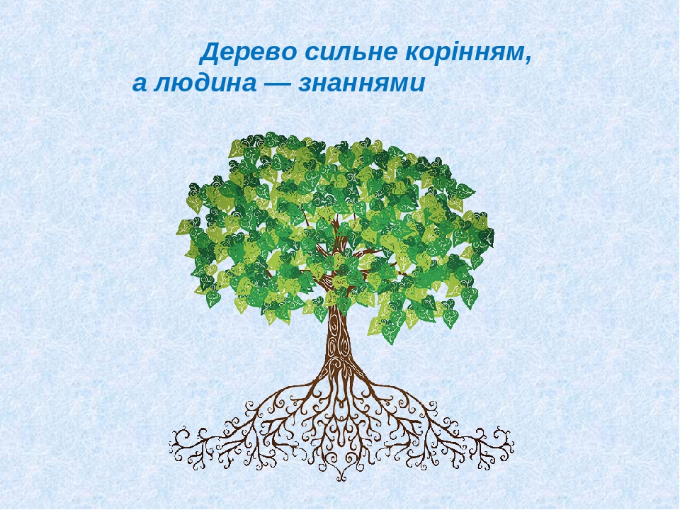 Дерево сильне корінням, а людина — знаннями