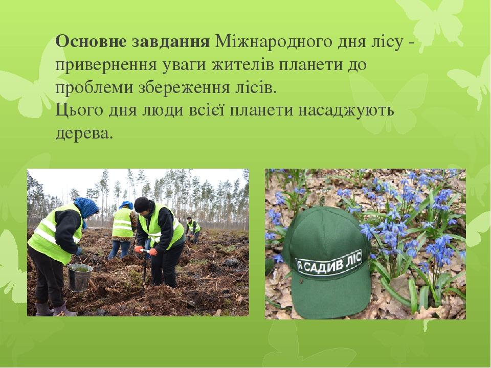 Основне завдання Міжнародного дня лісу - привернення уваги жителів планети до проблеми збереження лісів. Цього дня люди всієї планети насаджують де...