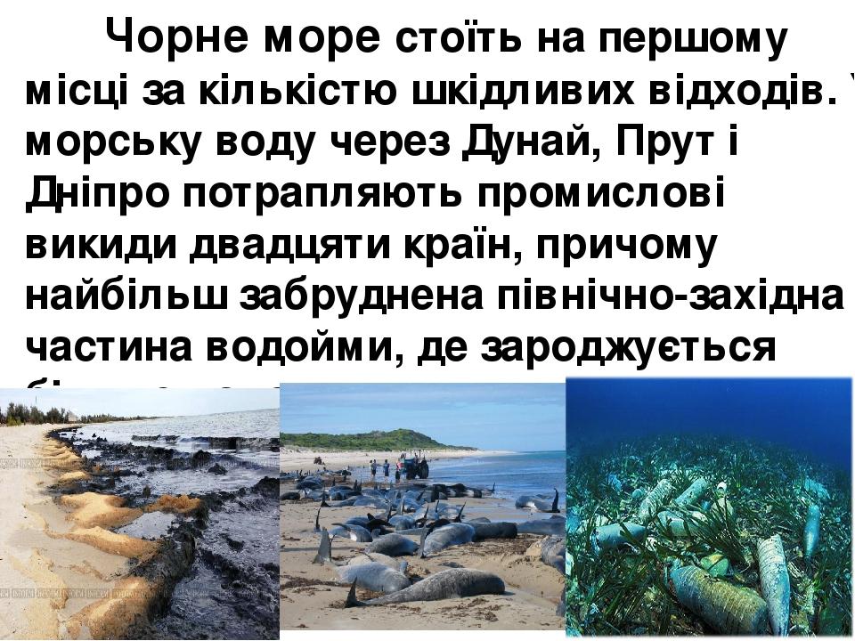 Чорне море стоїть на першому місці за кількістю шкідливих відходів. У морську воду через Дунай, Прут і Дніпро потрапляють промислові викиди двадцят...