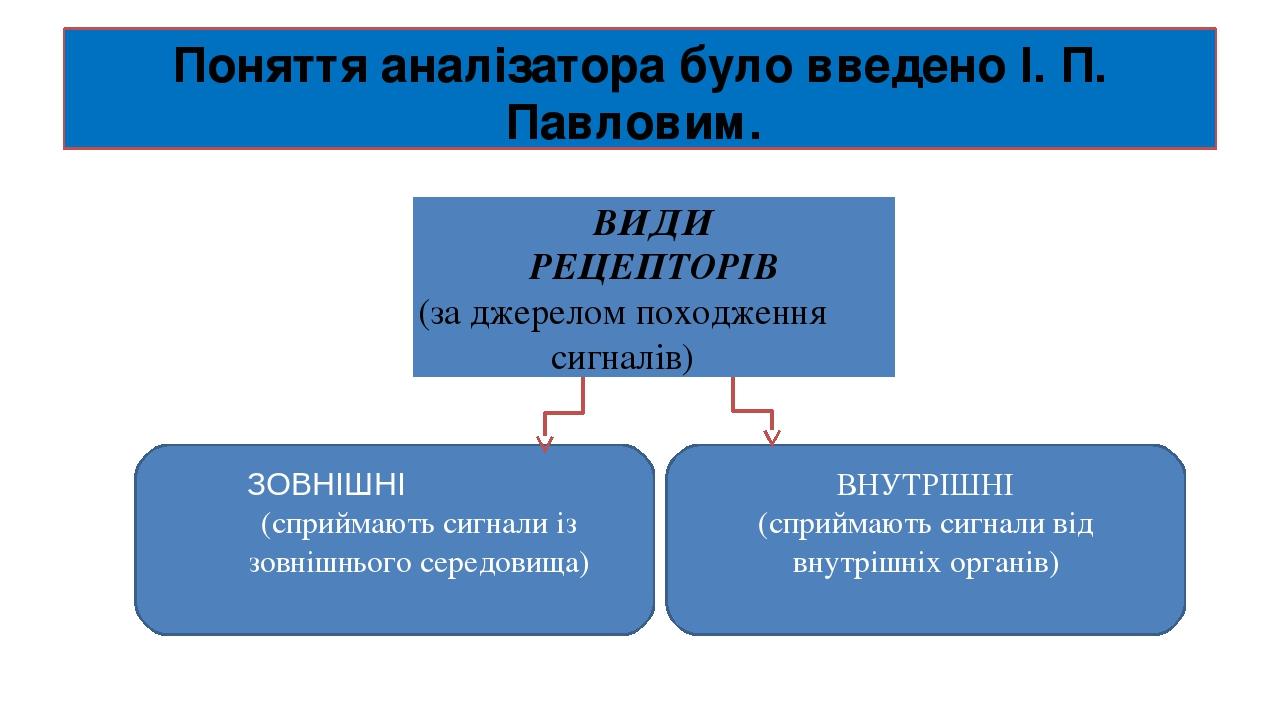 Поняття аналізатора було введено І. П. Павловим. ВИДИ РЕЦЕПТОРІВ (за джерелом походження сигналів) ВНУТРІШНІ (сприймають сигнали від внутрішніх орг...