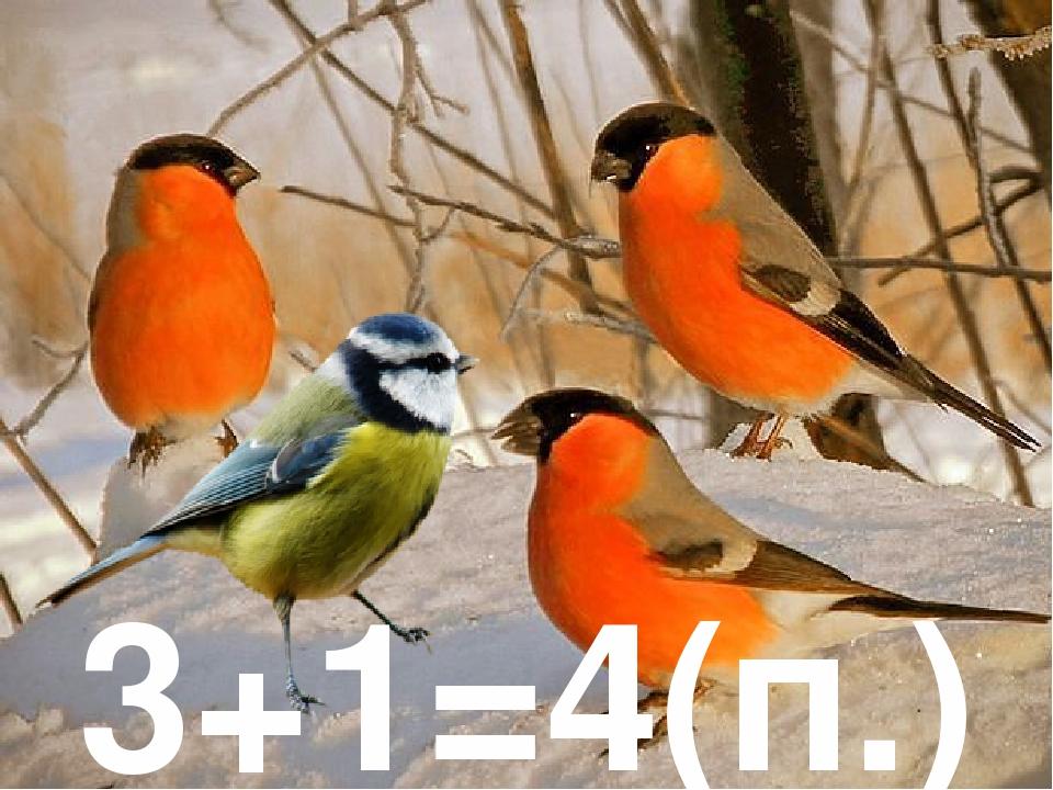 3+1=4(п.)