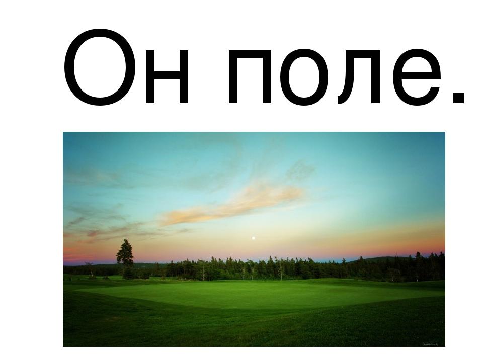 Он поле.