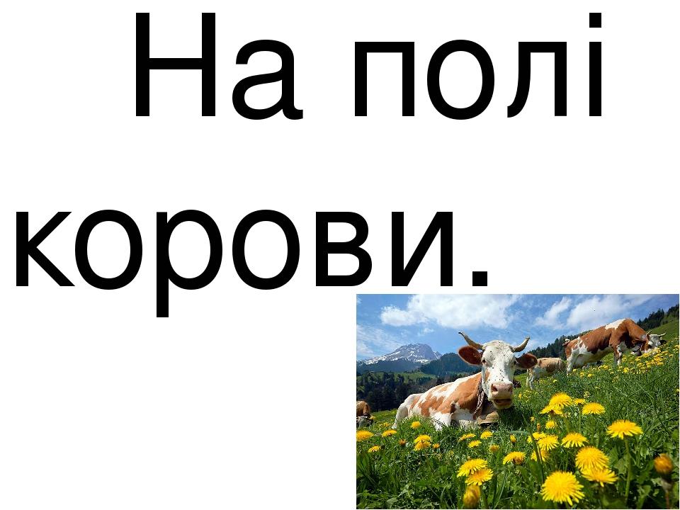 На полі корови.
