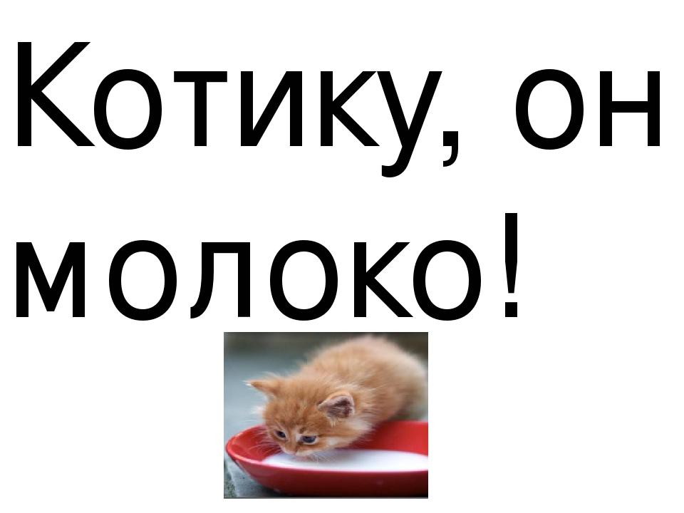 Котику, он молоко!