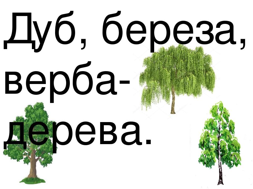 Дуб, береза, верба- дерева.