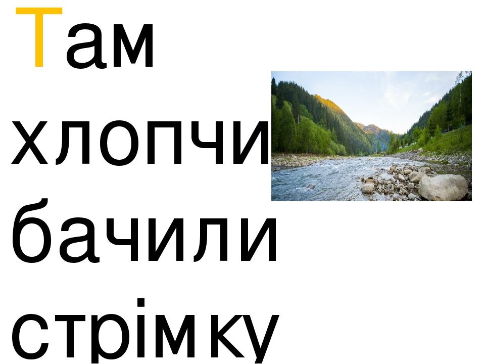 Там хлопчики бачили стрімку річку, високі гори.