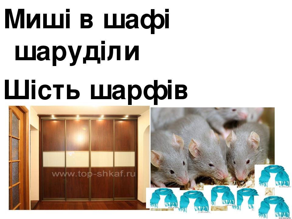 Миші в шафі шаруділи Шість шарфів шерстяних з`їли.