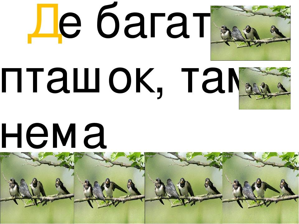 Де багато пташок, там нема комашок!