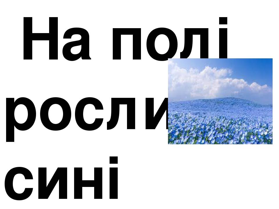 На полі росли сині квіти.