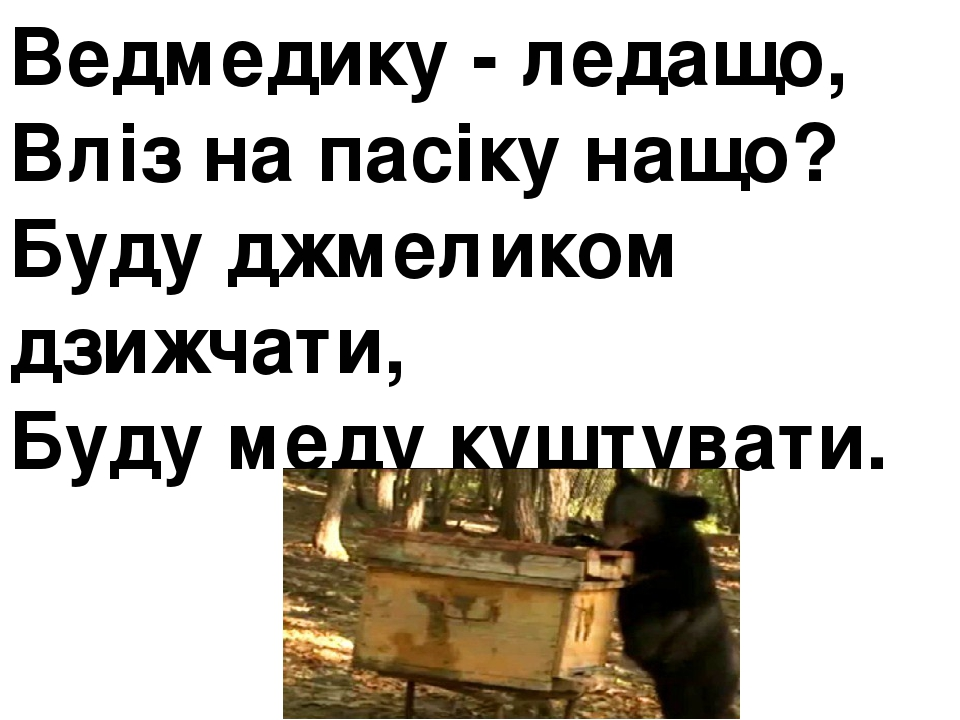 Ведмедику - ледащо, Вліз на пасіку нащо? Буду джмеликом дзижчати, Буду меду куштувати.