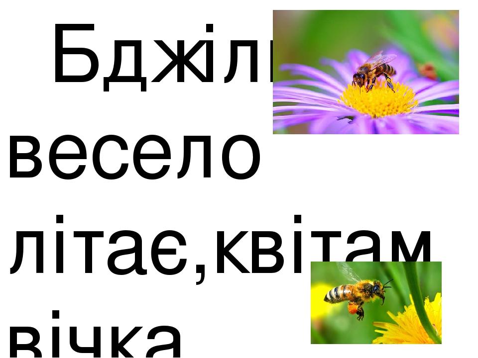 Бджілка весело літає,квітам вічка розтуляє, каже: