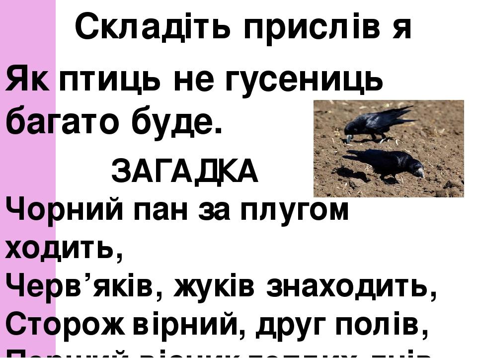 Складіть прислів′я Як птиць не гусениць багато буде. ЗАГАДКА Чорний пан за плугом ходить, Черв'яків, жуків знаходить, Сторож вірний, друг полів,...