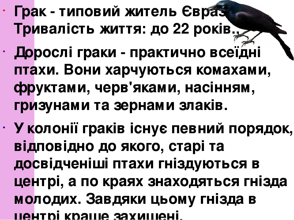Грак- типовий житель Євразії. Тривалість життя: до 22 років., Дорослі граки - практично всеїдні птахи. Вони харчуються комахами, фруктами, черв'як...