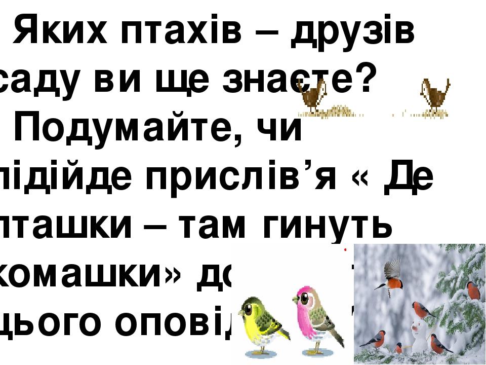 Яких птахів – друзів саду ви ще знаєте? - Подумайте, чи підійде прислів'я « Де пташки – там гинуть комашки» до змісту цього оповідання?
