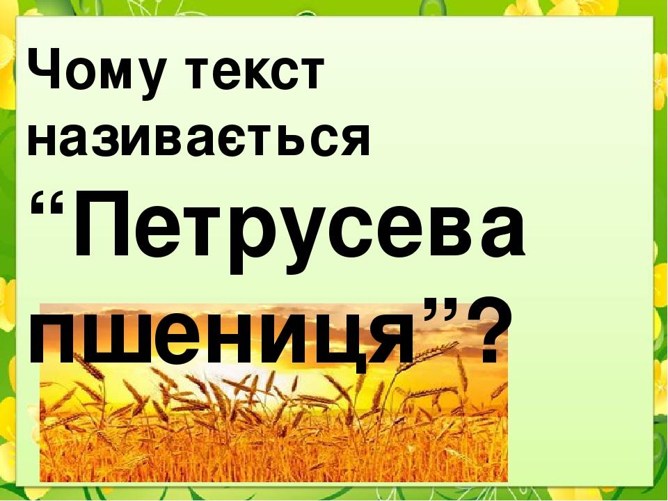 """Чому текст називається """"Петрусева пшениця""""?"""