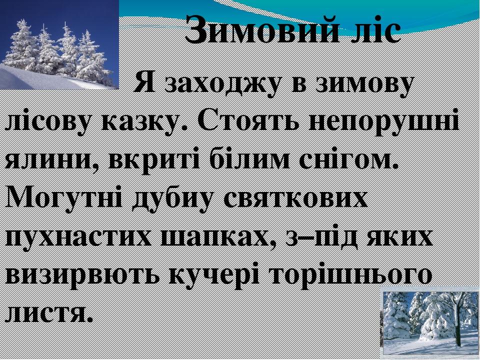 Зимовий ліс  Я заходжу в зимову лісову казку. Стоять непорушні ялини, вкриті білим снігом. Могутні дубиу святкових пухнастих шапках,...