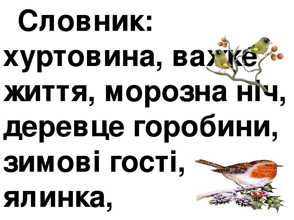 Словник: хуртовина, важке життя, морозна ніч, деревце горобини, зимові гості, ялинка, підгодовуємо пташок.