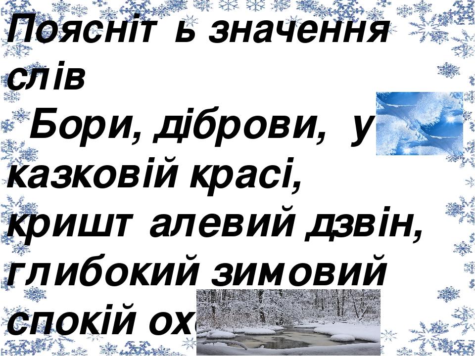 Поясніть значення слів Бори, діброви, у казковій красі, кришталевий дзвін, глибокий зимовий спокій охопив природу, морозяна тиша, панує холод.