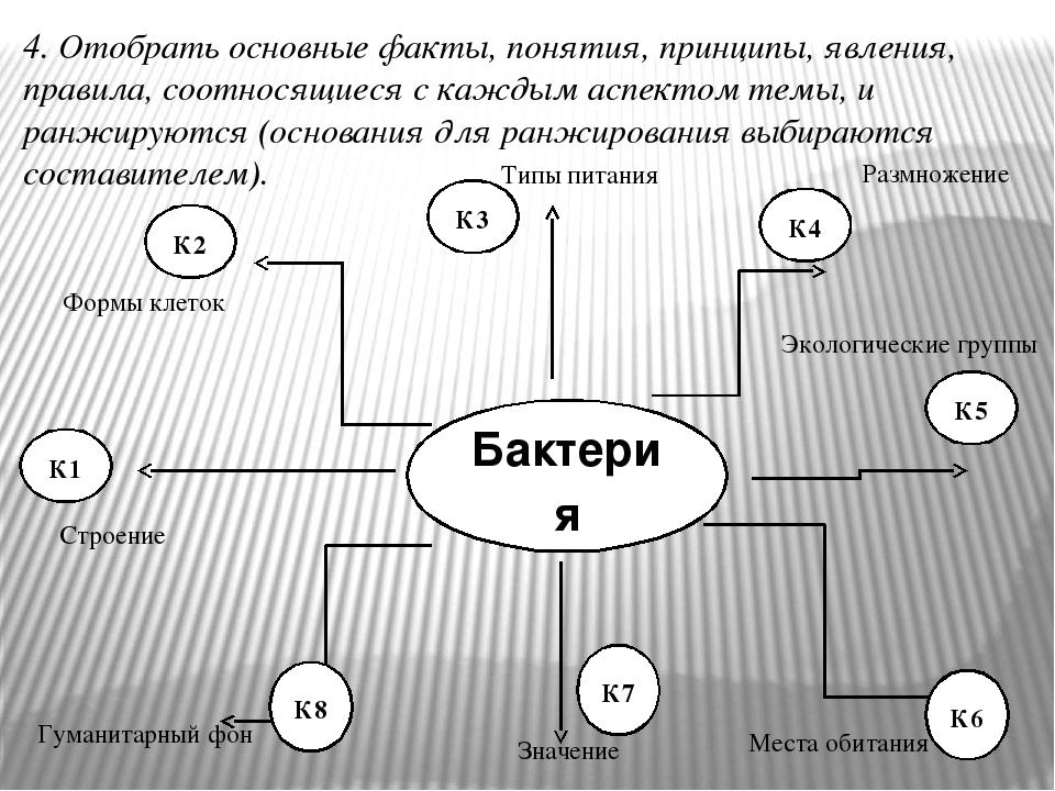 Бактерия К1 К2 К3 К4 К5 4. Отобрать основные факты, понятия, принципы, явления, правила, соотносящиеся с каждым аспектом темы, и ранжируются (основ...