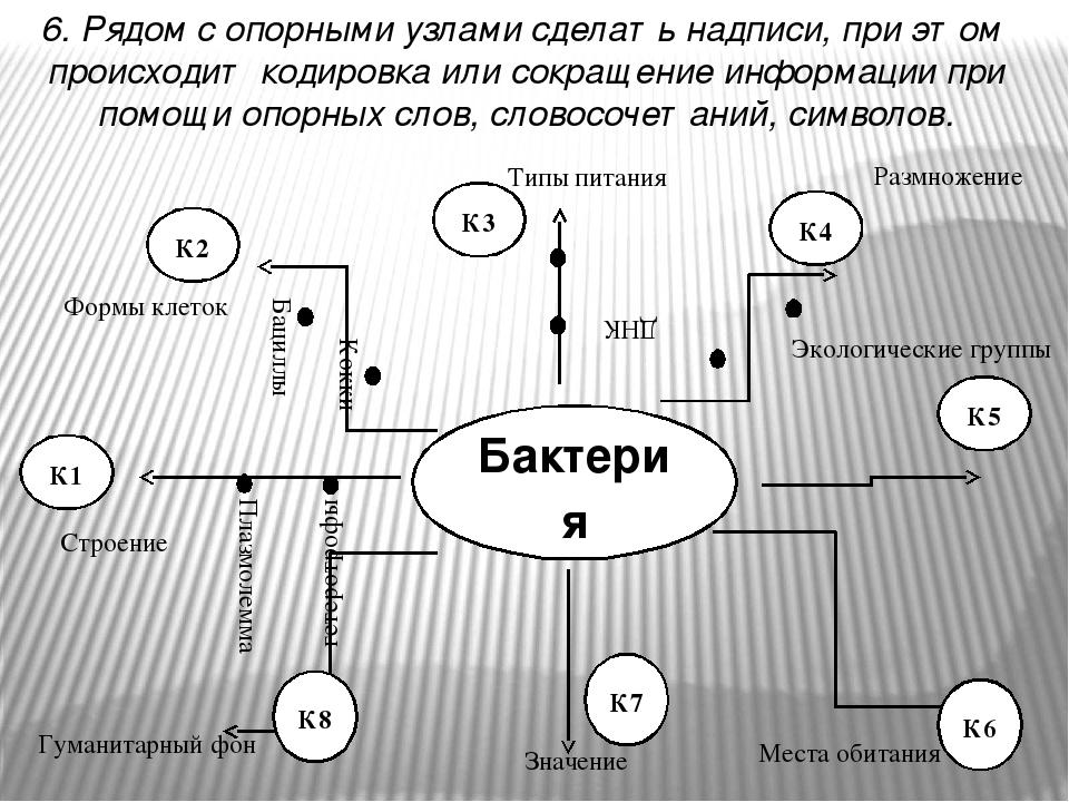К1 К2 К3 К4 К5 6. Рядом с опорными узлами сделать надписи, при этом происходит кодировка или сокращение информации при помощи опорных слов, словосо...