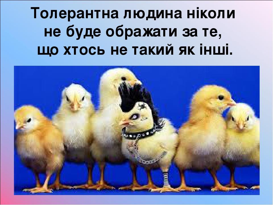 Толерантна людина ніколи не буде ображати за те, що хтось не такий як інші.